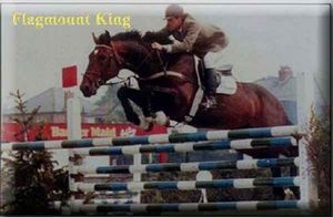 Flagmount King